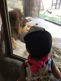 日本平動物園3.JPG